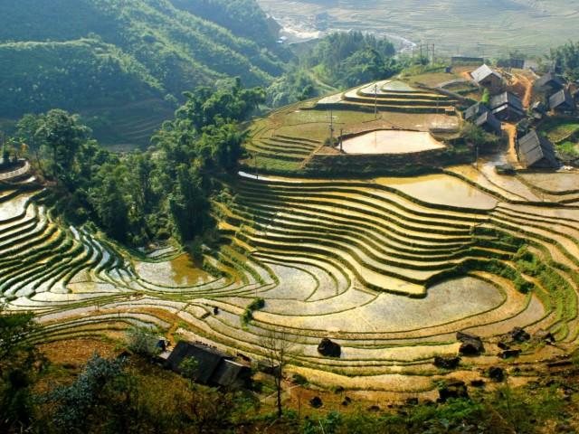 На екскурзия в планините Сапа, северен Виетнам