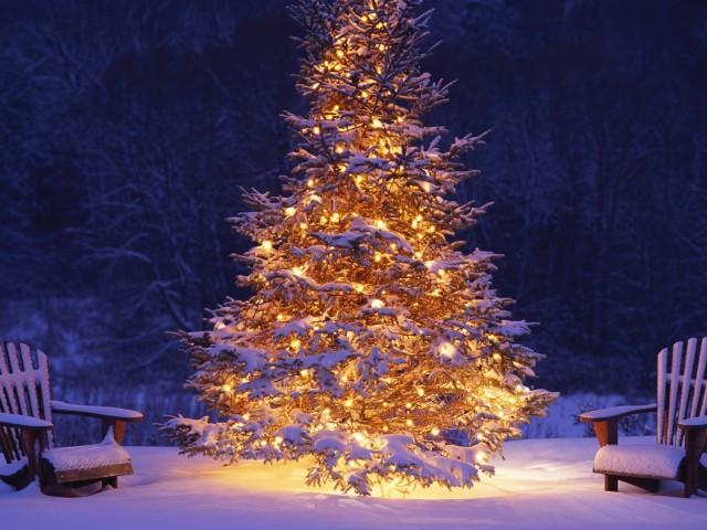 Коледа, Нова година - трапеза, късмети и пожелания