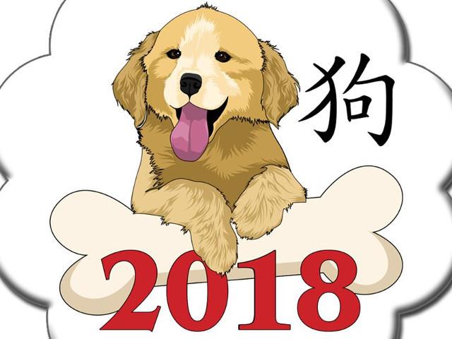 2018 е годината на Кучето